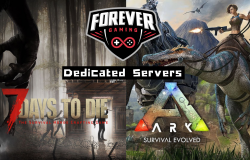 Forever Gaming's Dedicated Servers